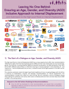 Age, Gender, Diversity High-Level Panel on Internal Displacement Joint Submission